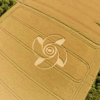 crop-circle-kornkreis-june-2015-grossziethen-near-berlin