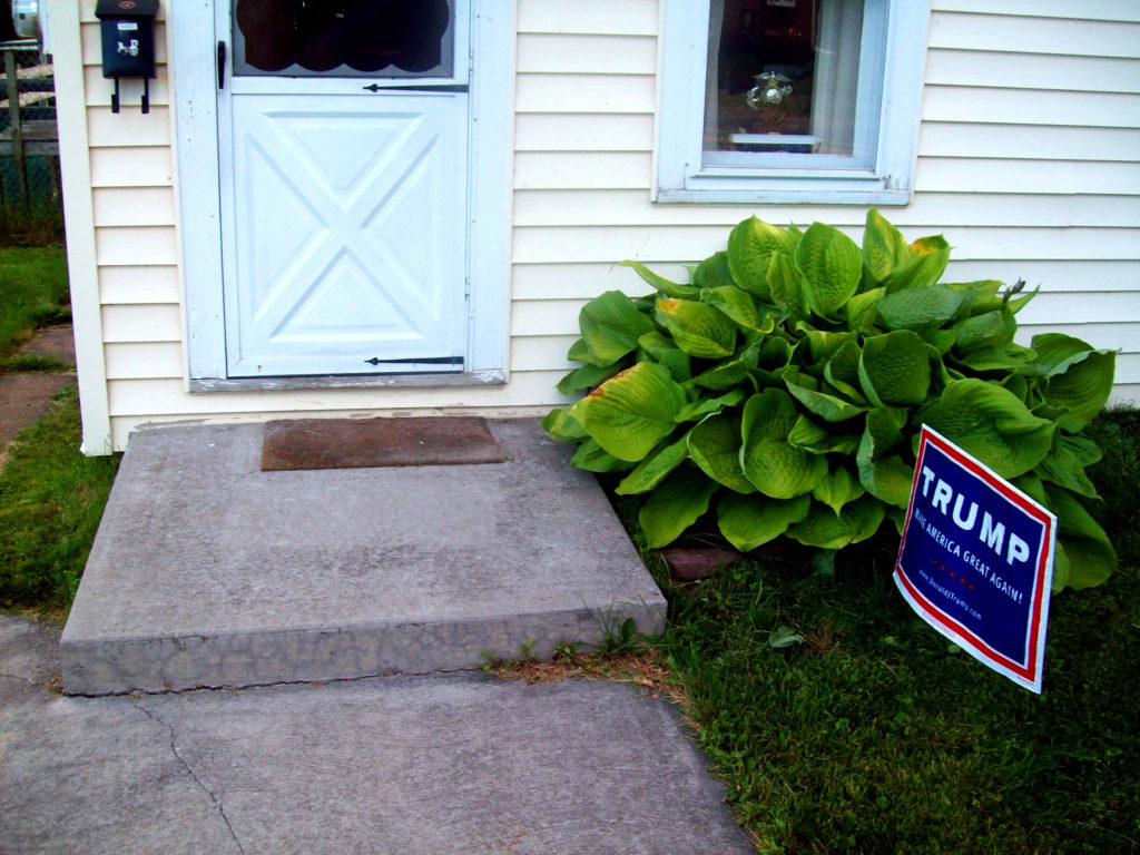306-s-steel-st-birdsfoot-plant-trump-sign-2