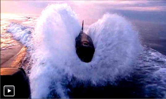 angry-killer-whale-protective-orca-pursues-fishing-boat