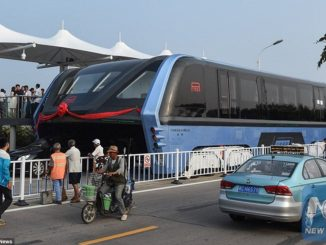chinese-elevated-bus