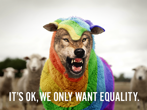 gay-rainbow-wolf-in-sheep-clothing-only-want-equality