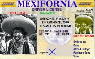 humor-mexifornia-hispanic-driver-license
