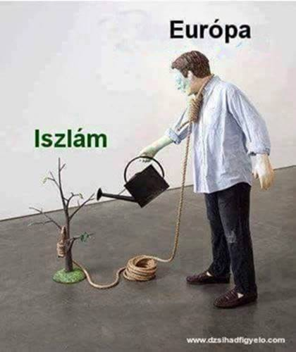 islam-europe-watering-tree-to-hang