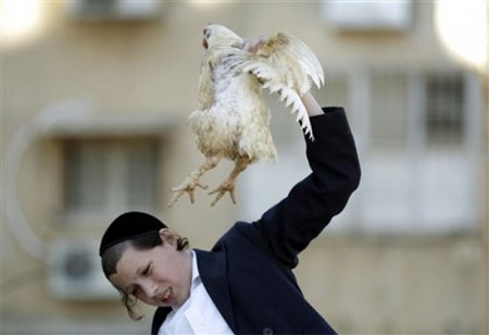 jewish-boy-kapores-rooster