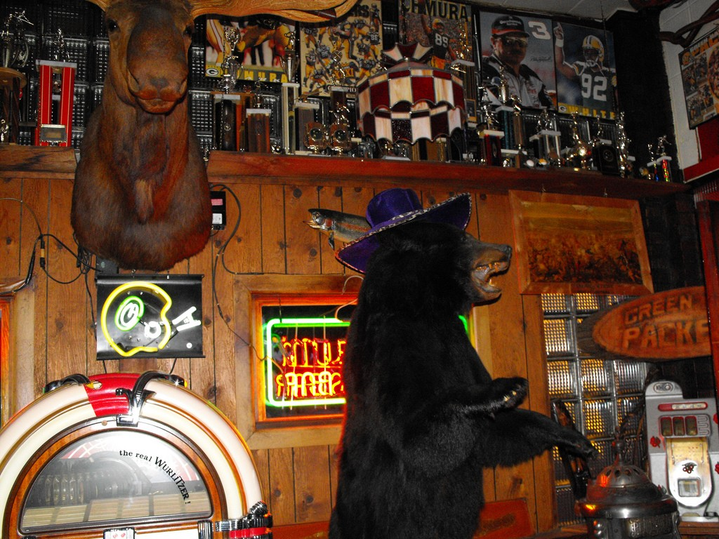 mounted-moose-head-stuffed-bear-stubb-s-bar-ontonagon-michigan