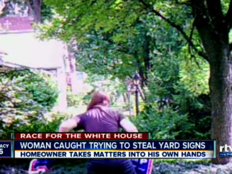 trump-hater-tries-steal-yard-sign