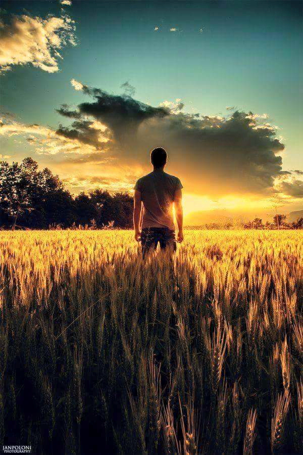young-man-faces-.future-sun-rays-field